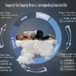 Stages of the Sleeping Brain and Corresponding Essential Oils