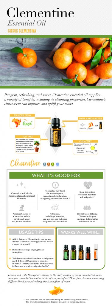 doTERRA Clementine Essential Oil InfoGraphic
